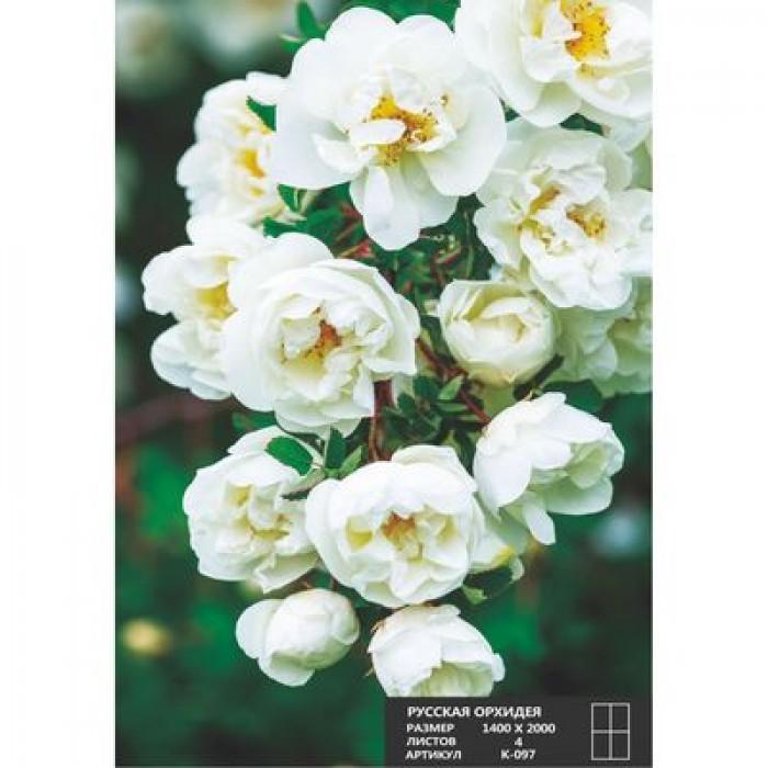 Фотообои К-097 «Русская красавица» (4 листа), 140 × 200 см