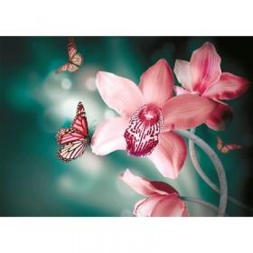 Фотообои самоклеящиеся «Орхидеи», 2 листа, 100 × 140 см