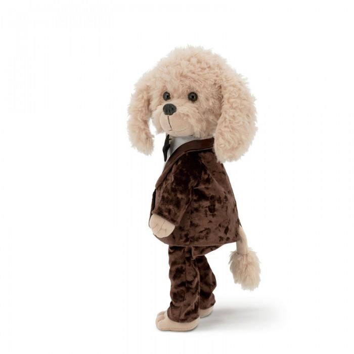 Собачка Lucky Bobby: Дресс-код
