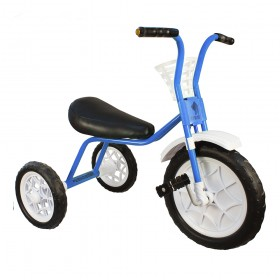 """Велосипед детский трехколесный """"Зубренок"""" голубой"""